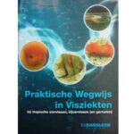 boek-praktische wegwijs in visziekten